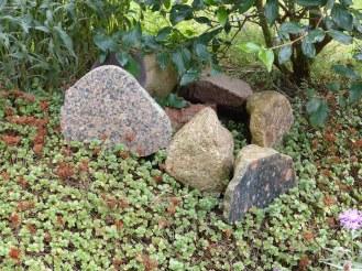 Links zowaar een Barnarpgraniet uit Zuid-Zweden. In Nederland uitermate zeldzaam, in Denemarken op sommige plaatsen erg algemeen.
